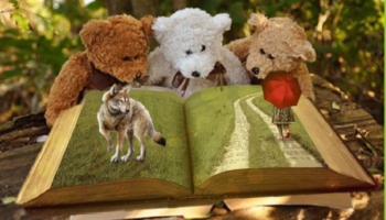 Illustration cabanes à livres