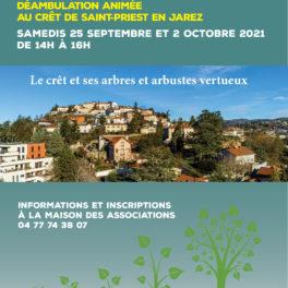 Affiche semaine développement durable